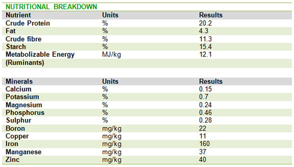Nutritional_Breakdown