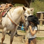 Girl kissing horse