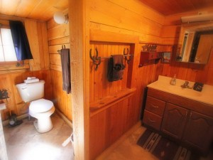 Bar Lazy J Cabin Bath