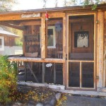 Bar Lazy J Cabin Exterior