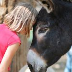 girl and donkey
