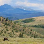 Beautiful Rocky Mountain location for Colorado horseback riding