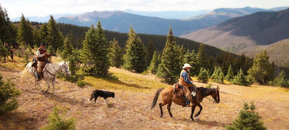 rocky mountain horseback riding from bar lazy j